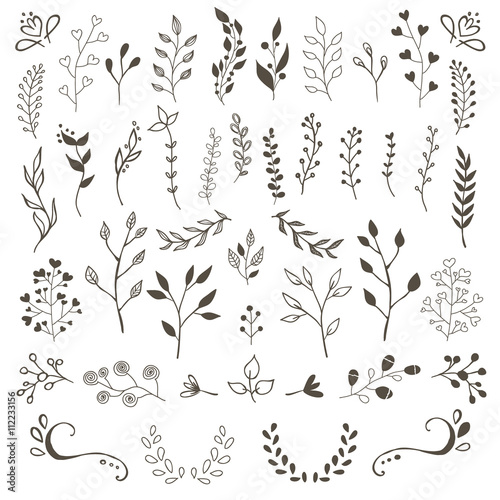 Hand Drawn Vector Floral elements  Wall mural