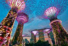 Singapore City Skyline. Gardens By The Bay