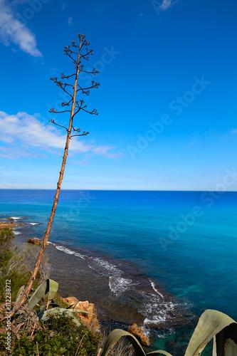 Denia Las rotas beach near Sant Antonio cape Poster