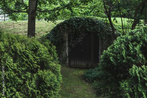 Old door in the ground in woods