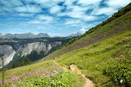 Obraz na plátně summer mountain landscape, Morzine