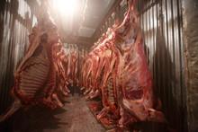 Slaughterhouse Cows, Hanging O...