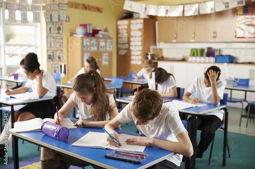 Fotografie, Obraz  Třídy základní školy děti studují ve třídě