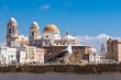 Skyline von Cadiz mit Kathedrale und Uferpromenade und Seemöwe