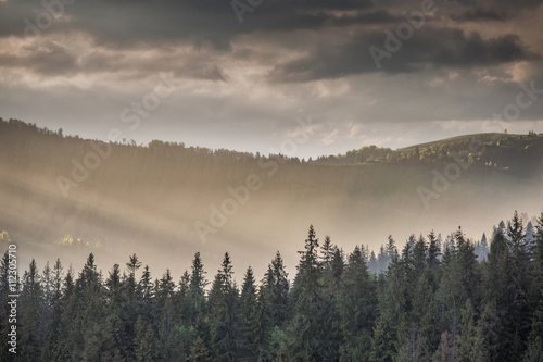 Poster Morning with fog Storm clouds over mountains and the forest