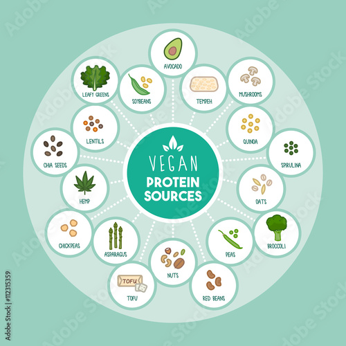 Fotografie, Obraz  Vegan protein sources