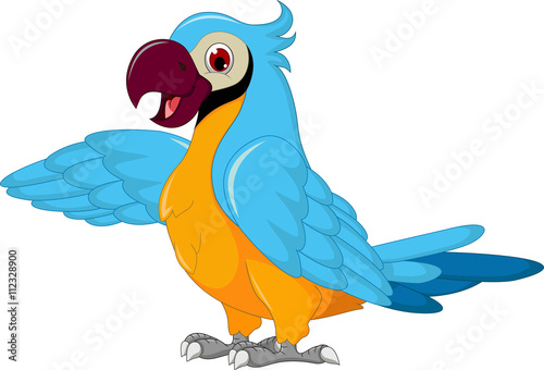 Poster Vogels, bijen cute parrot cartoon posing