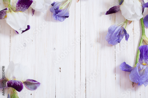 iris on white wooden background