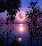 Sylwetki lasów i piękny wschód księżyca i jasny księżyc w pełni. - 112365976