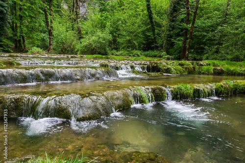 Deurstickers Bos rivier Rivière le Dard