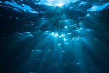 Underwater Shot With Sunrays I...
