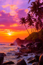 Palm Trees On Tropical Beach At Sunset