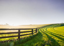 Horse Fence Snakes Its Way Over The Hill