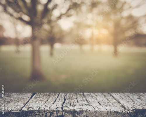 Staande foto Natuur Blurred Nature Background with Vintage Style Filter