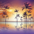 Exotic tropical palm trees at sunset or moonlight, with cloudy