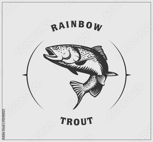 Valokuva Illustration of rainbow trout.