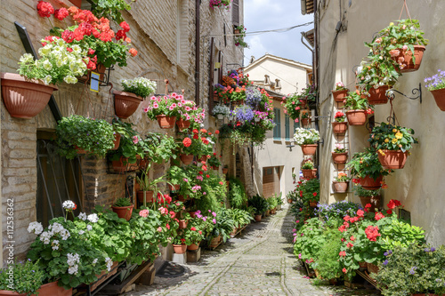 Fototapety, obrazy: Flowers in side street Spello