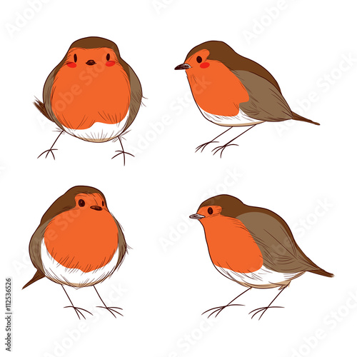 Set of different hand drawn color cute robin birds Wallpaper Mural