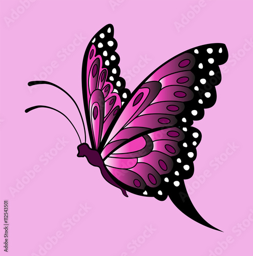 Vector Illustration Of Violet Butterfly On Pink Farfalla Vettoriale