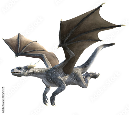 Fotografie, Tablou  Elegant dragon isolated on white background 3d illustration