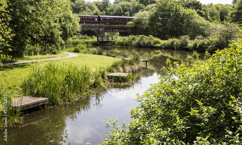 Fotografia, Obraz  Railway bridge over River Irwell at Burrs Country Park, Bury, England