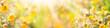 Leinwandbild Motiv Sommer, Sonne, Blumenwiese - Banner