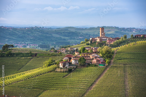 Panorama of Piedmont vineyards and Barbaresco town Canvas Print