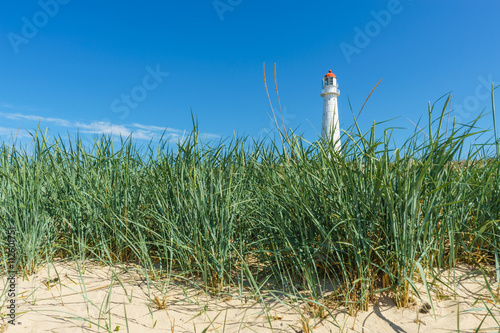 Fotografie, Obraz  Tahkuna lighthouse through sedge grass