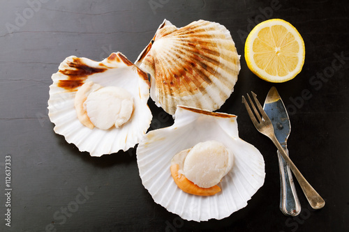 Photo  Raw fresh scallops in the shell with lemon