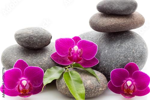 Photo sur Toile Bestsellers Spa stones