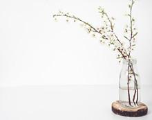 Spring Flowers In Vase On Table