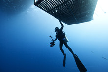 Scuba Diver Underwater By Diving Cage