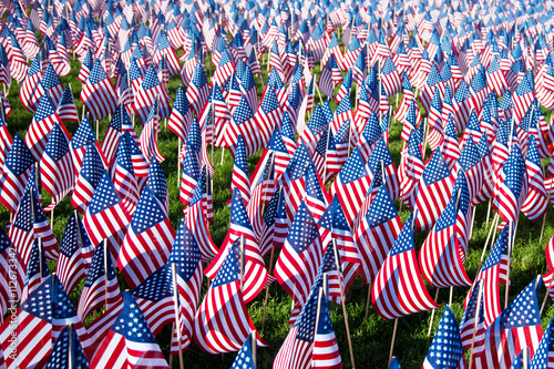 Poster  Field of American flags on display for Memorial Day or July 4th