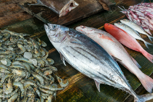 Fresh raw seafood on market Wallpaper Mural