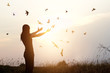 Freedom of life, free birds and woman enjoying nature in sunset background