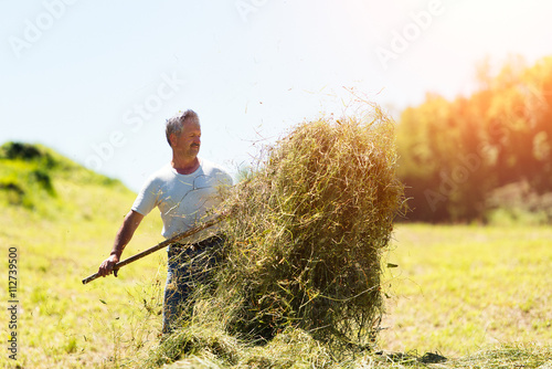 Man farmer turns the hay with a hay fork Fototapeta