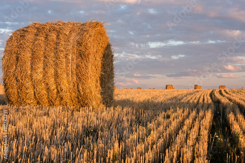 Haystacks on the field. Agricultural landscape Fototapet