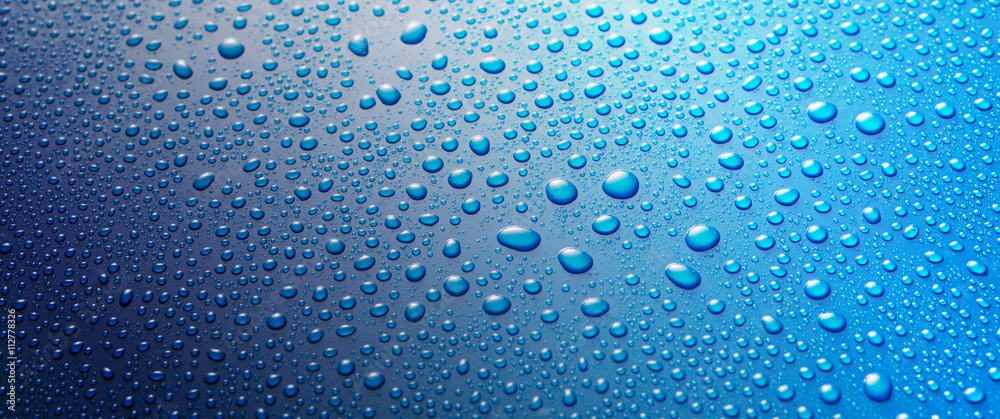 Fototapeta Panoramic banner of water drops on blue metal