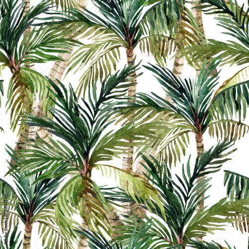 malowane-palmy-kokosowe-na-bialym-tle