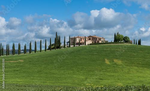 Aluminium Prints Tuscany schönes landhaus in der Toskana mit Zypressenallee