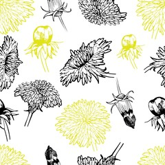 Panel Szklany Vector seamless pattern of dandelion blossom. Summer medical hand drawn flowers in engraved style. For medicine, coocking, gardening or decorating.