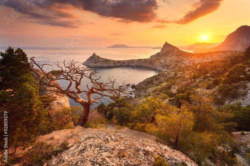 Foto op Plexiglas Landschappen Landscape with beautiful view on mountain valley and tree, blue sky and sea at sunrise. Travel background