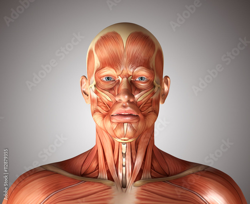 Photo 3d render of a medical figure with fashial expression showing fr