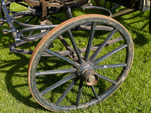Classical Vintage Horse Carriage