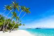 Urlaub am Palmenstrand mit Meer