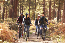 Group Of Friends On Bikes In Forest Front View