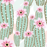 Cactus with pink flowers on the light background. Vector seamless pattern with cacti. - 112983119
