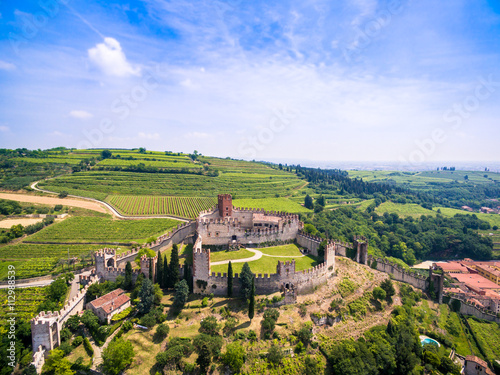 Fotografie, Obraz  View of Soave (Italy) and its famous medieval castle.