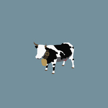 Stereotypical Swiss Dairy Cow