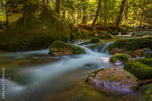 Fototapety, obrazy: Górski potok